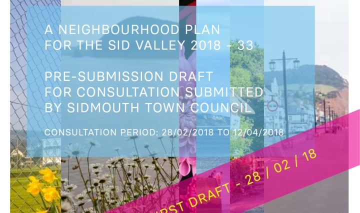sid valley neighbourhood plan pre-submission draft copy